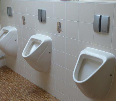 toilet-100783_1280