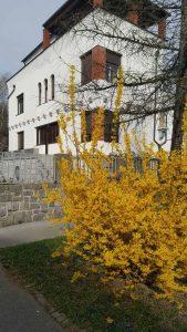 UROLOŠKA AMBULANTA in LSWT TERAPIJA @ Ažbetova 4 | Ljubljana | Slovenija